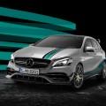 Mercedes AMG Petronas 2015 World Champion Edition